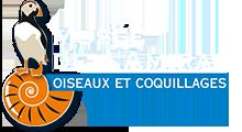 logo Musée de l'Amiral